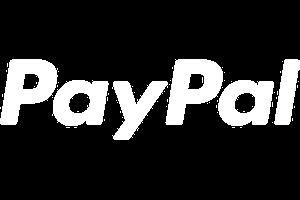 Logo PayPal png